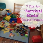 "7 Tips for ""Survival Mode"" House Cleaning"