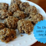 The Easiest Cookies You Will Ever Make